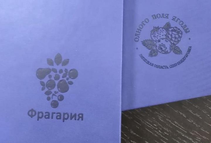 Разработка фирменного логотипа компании