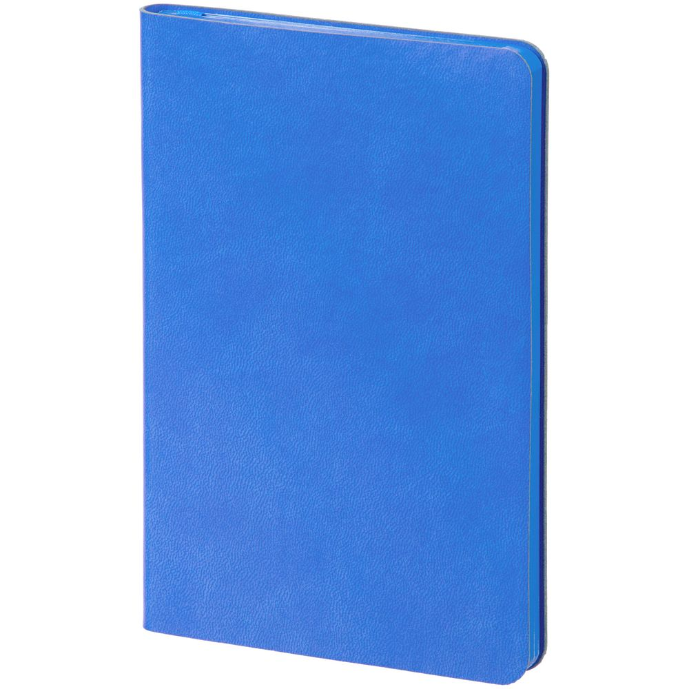 Ежедневник Neat, недатированный, синий